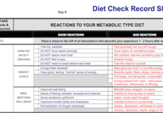 Diet Record Check Sheet Top